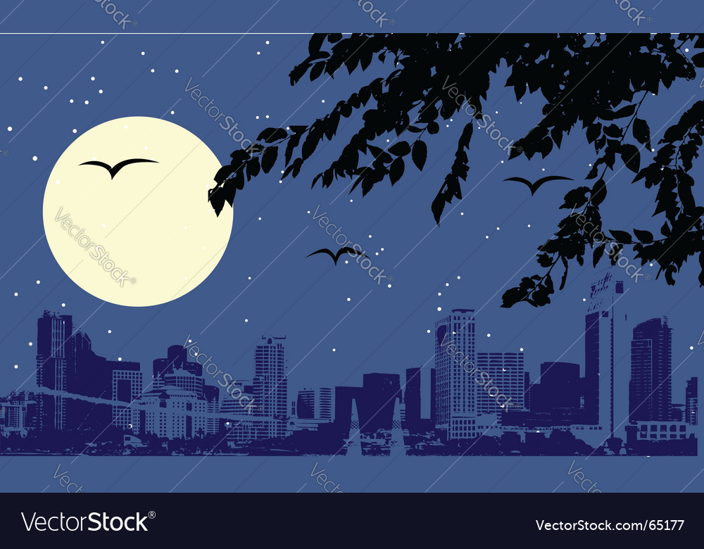 Cityscape at night vector   Price: 1 Credit (USD $1)