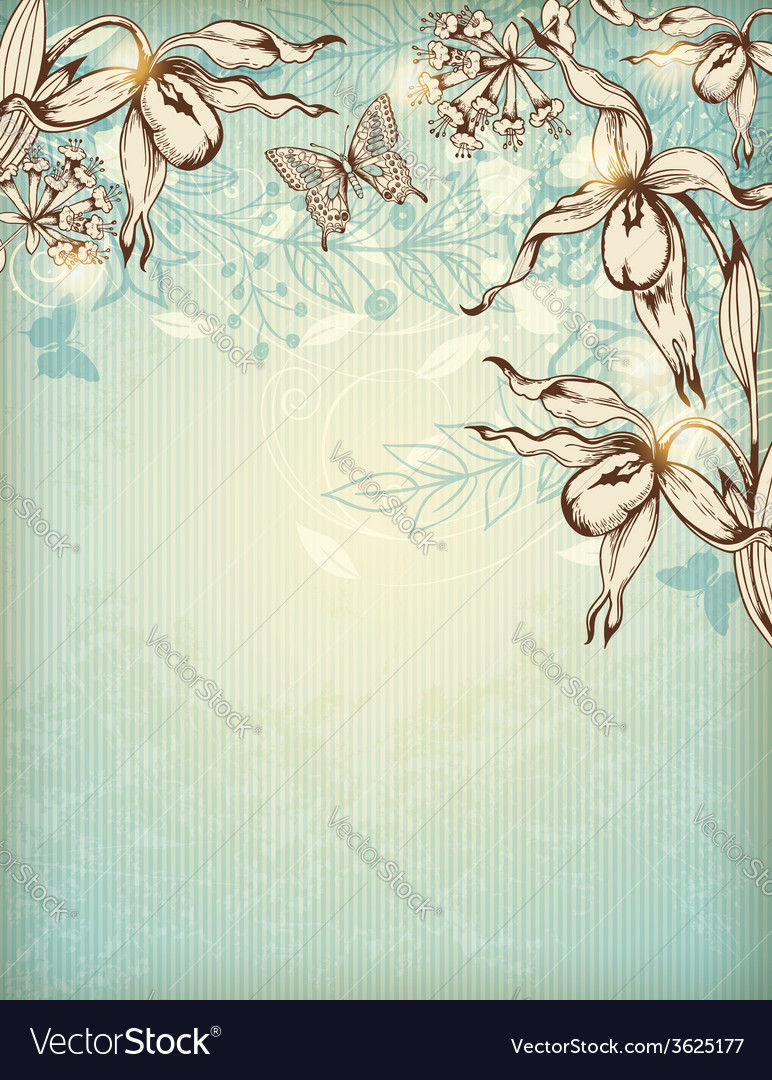 Decorative hand drawn floral background vector | Price: 1 Credit (USD $1)
