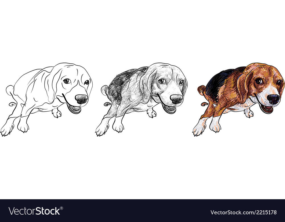 Pooping beagle vector | Price: 1 Credit (USD $1)
