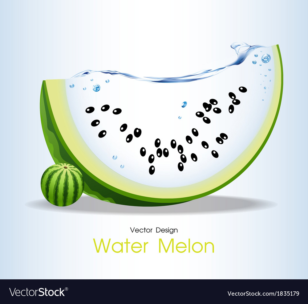 Water melon fruits design vector | Price: 1 Credit (USD $1)