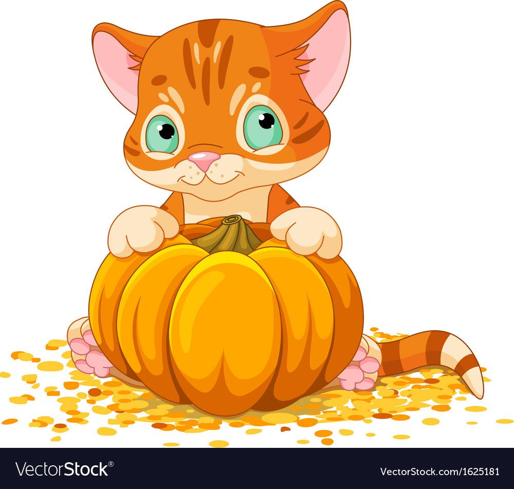 Harvest kitten vector | Price: 1 Credit (USD $1)