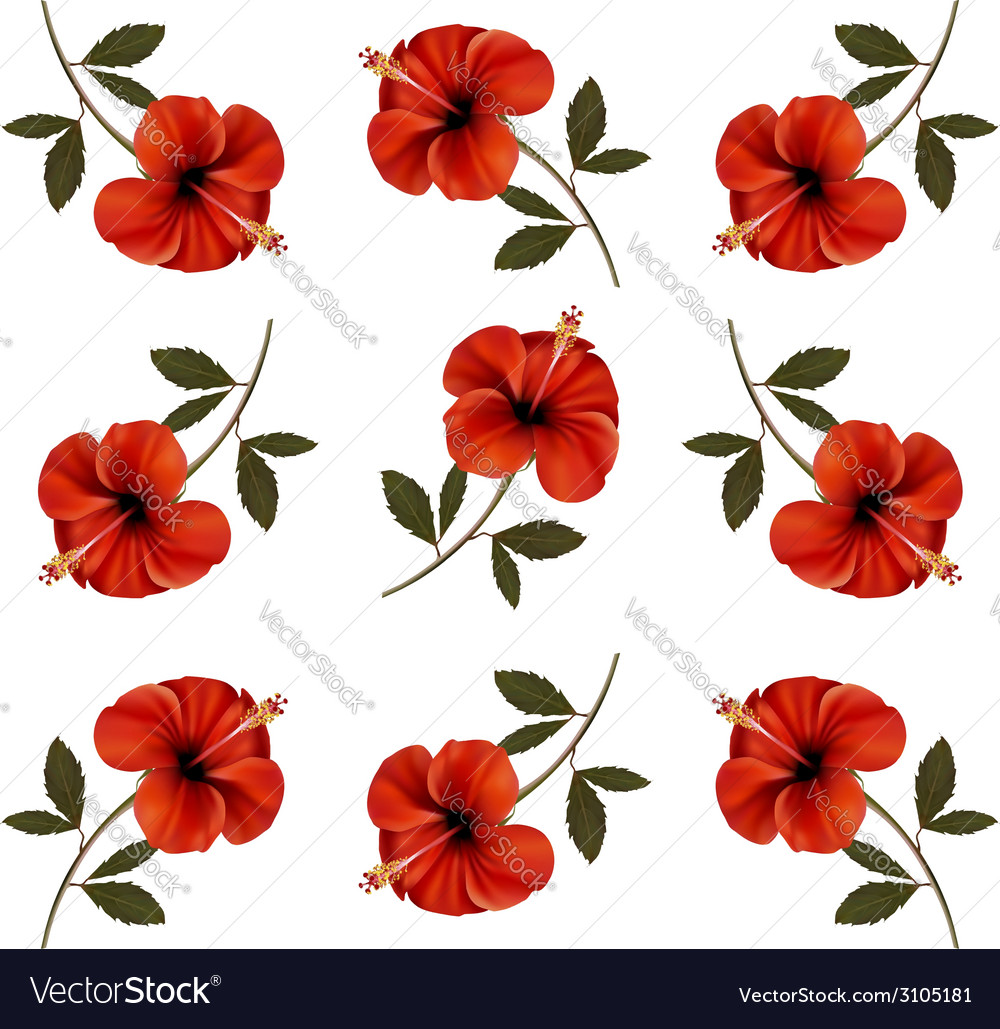 Pattern of beautiful red flowers vector | Price: 1 Credit (USD $1)