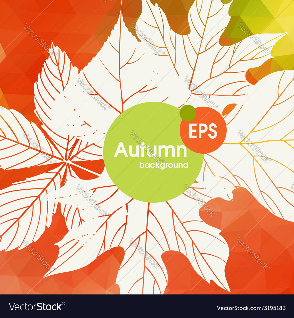 Autumn background with leaves vector   Price: 1 Credit (USD $1)