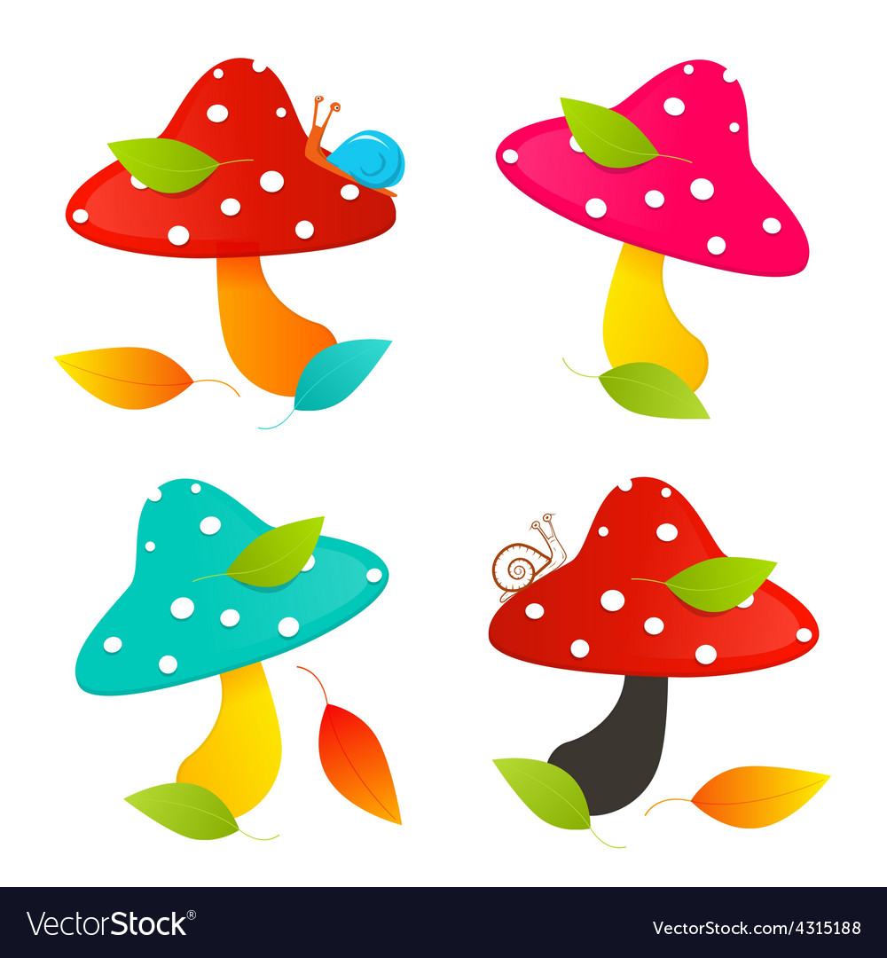 Amanita mushroom set  colorful vector