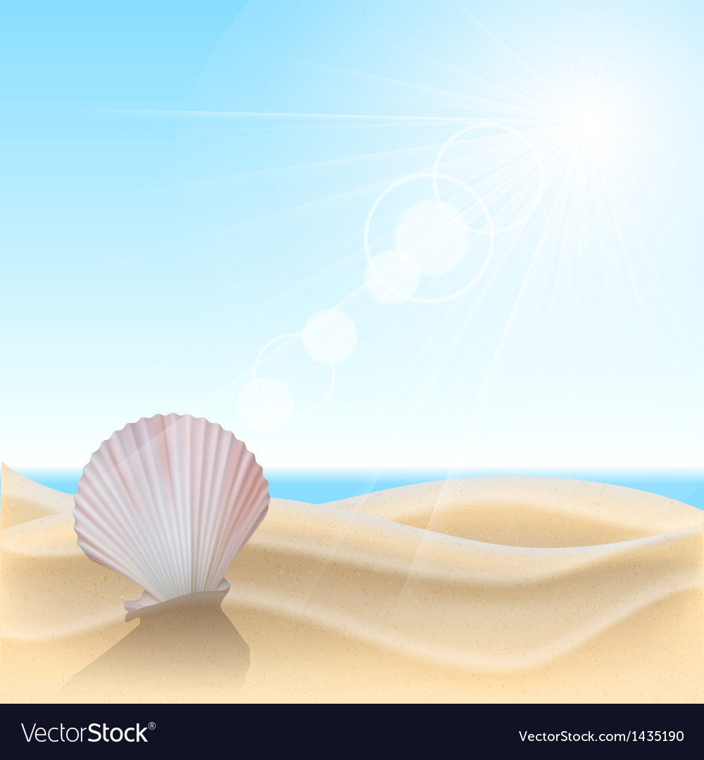 Shell on the beach vector | Price: 1 Credit (USD $1)