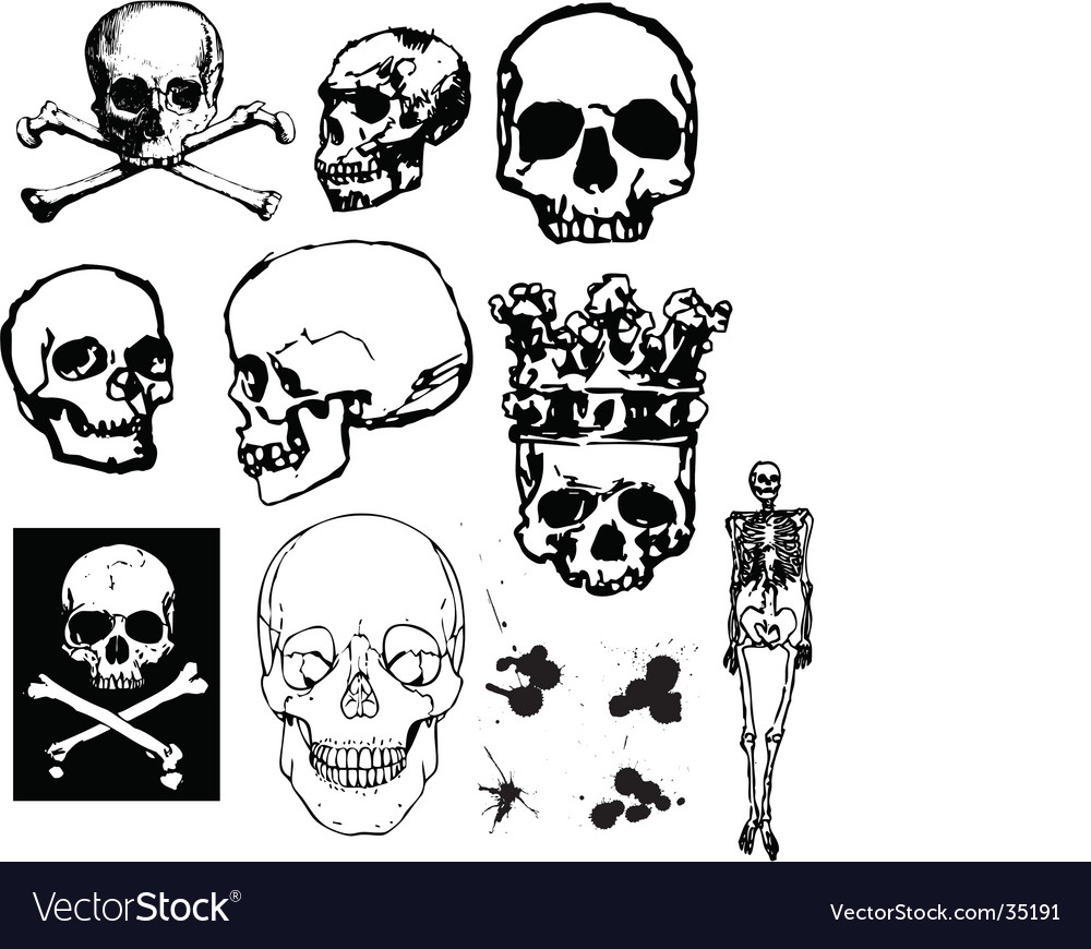 Grunge skulls and bones vector | Price: 1 Credit (USD $1)