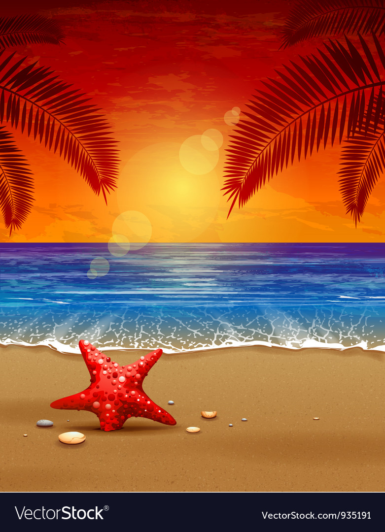 Sea sunset vector | Price: 3 Credit (USD $3)