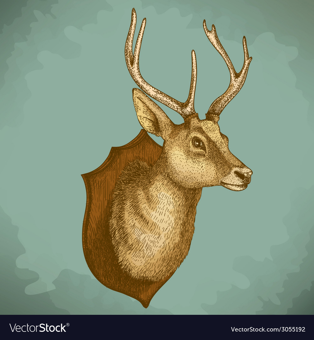 Engraving deer head retro vector | Price: 1 Credit (USD $1)