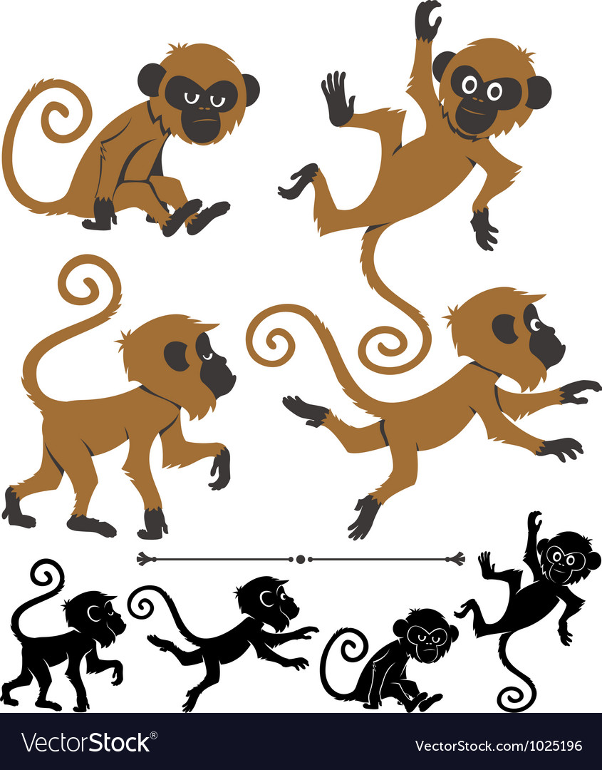 Monkeys vector | Price: 3 Credit (USD $3)