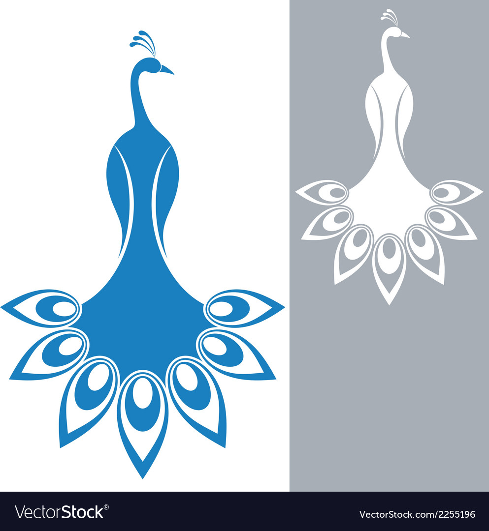 Peacock vector | Price: 1 Credit (USD $1)