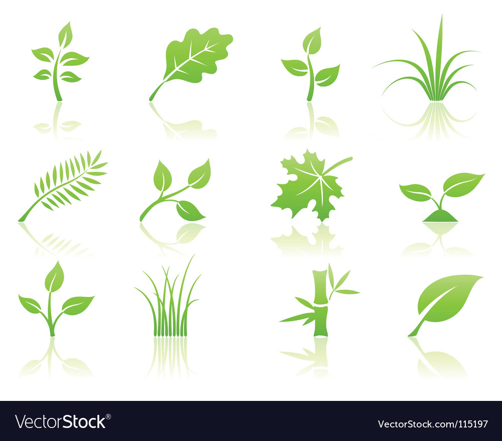 Floral icon set vector | Price: 1 Credit (USD $1)
