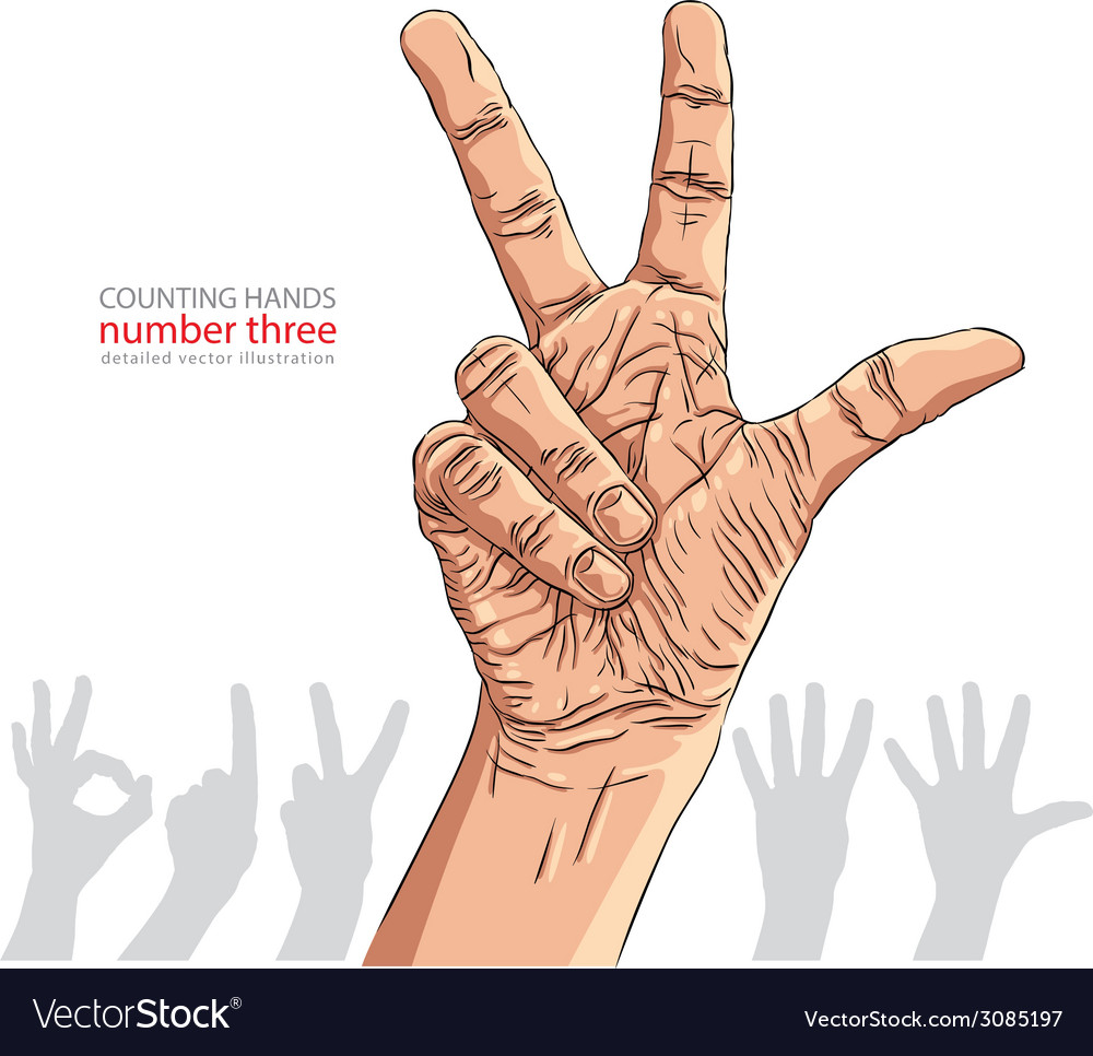 Numbers hand signs set number three detailed vector | Price: 1 Credit (USD $1)
