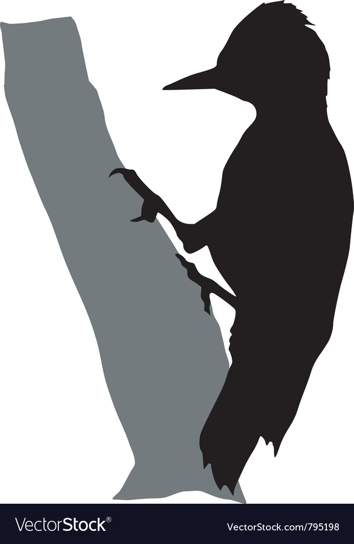 Black silhouette of woodpecker vector | Price: 1 Credit (USD $1)