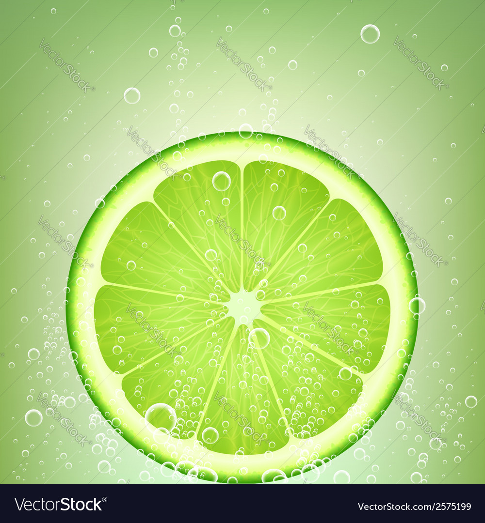Lemonade lime vector | Price: 1 Credit (USD $1)