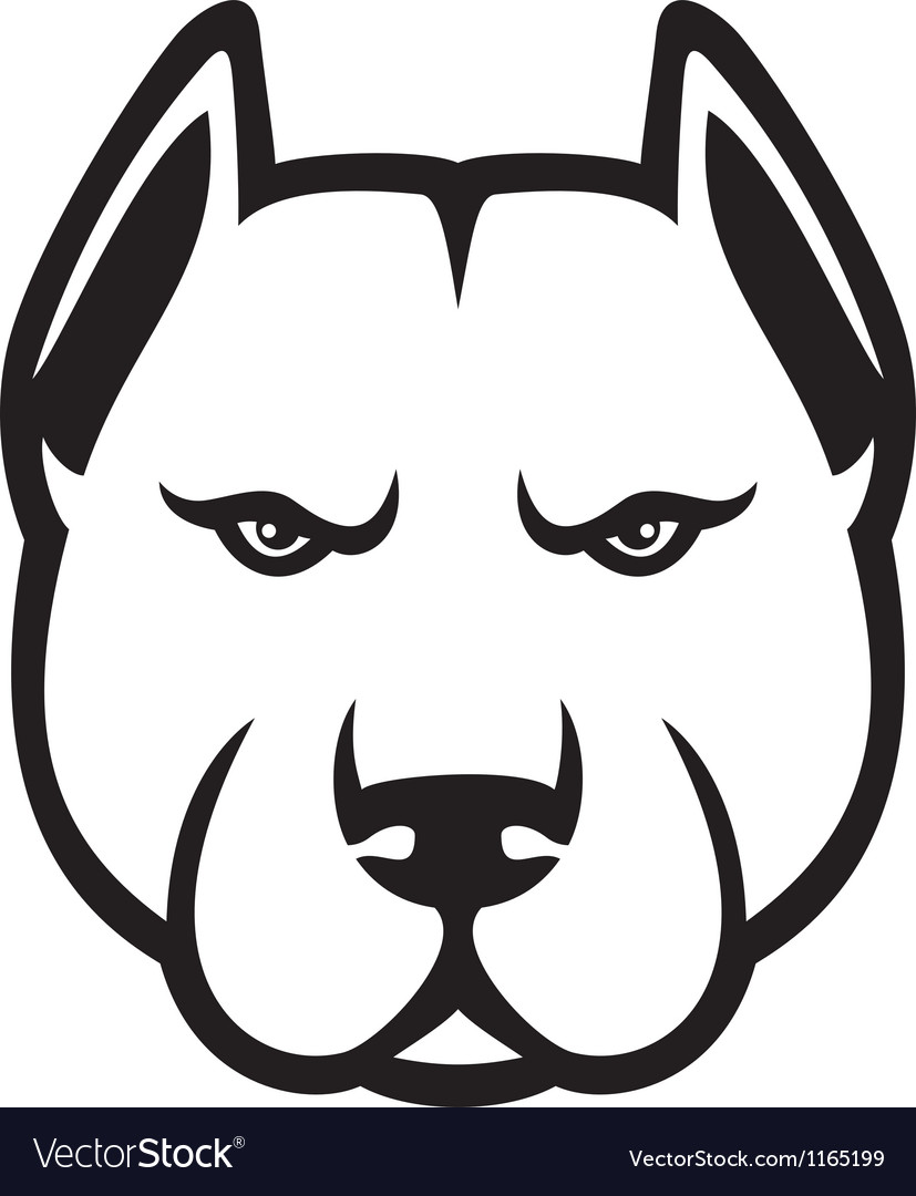 Pit bull head vector | Price: 1 Credit (USD $1)