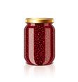 Jam jar isolated vector