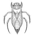 Water beetle outline vector