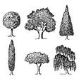 Set of trees in silhouettes vector