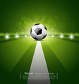 Soccer ball on green grass background vector