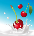Splash of milk with cherry - with blue backg vector