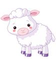 Farm animals lamb vector