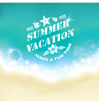 Summer marine background vector