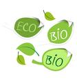 Bio leaf vector