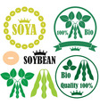 Soybean vector