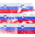 Flag of slovenia with old texture vector