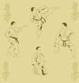 Four men show karate vector
