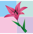 Origami lily flower card colorful floral vector