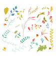 Set of florals and ribbon vector