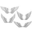 Heraldic wings vector