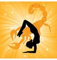 Woman in yoga scorpio asana vector