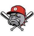 Bulldog as a baseball mascot vector