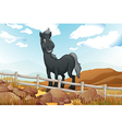 A smiling gray horse near the wooden fence vector