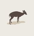 Image of an barking deer vector