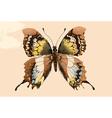 Artistic butterfly design vector