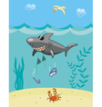 Shark attack vector