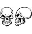 Cartoon skulls vector