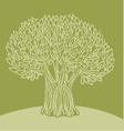 Olive tree vector