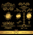 Golden set calligraphic and decorate elements vector