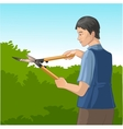 Gardener trimming a bush or tree with big clippers vector