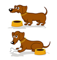 Dachshund in action vector