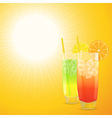 Summer cocktail background vector