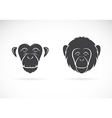 Image of monkey face vector