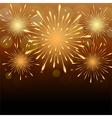 Fireworks background vector