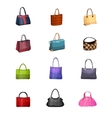 Women s fashion collection of bags vector
