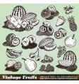 Vintage fruits collection vector