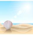 Shell on the beach vector